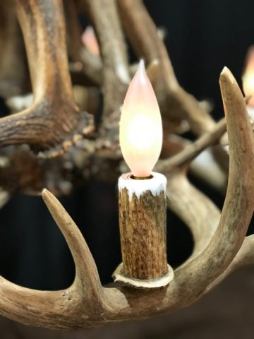 real antler light socket covers