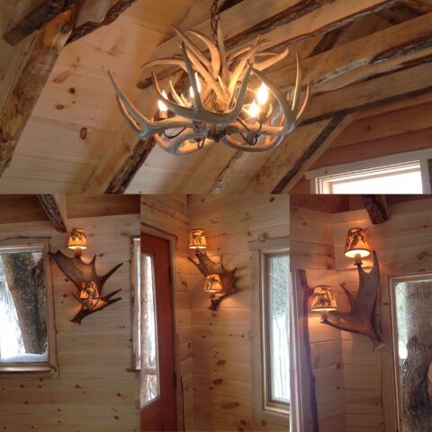moose meadow lodge pictures