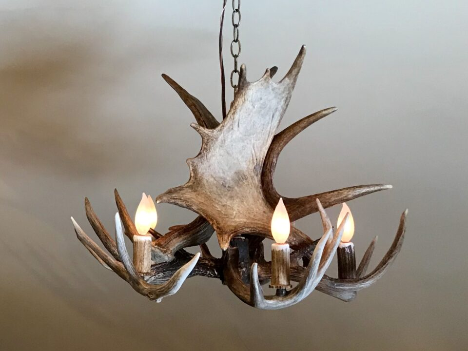 moose whitetail chandelier