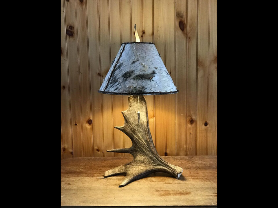 Real Moose Antler Table Lamp with White Birch Shade