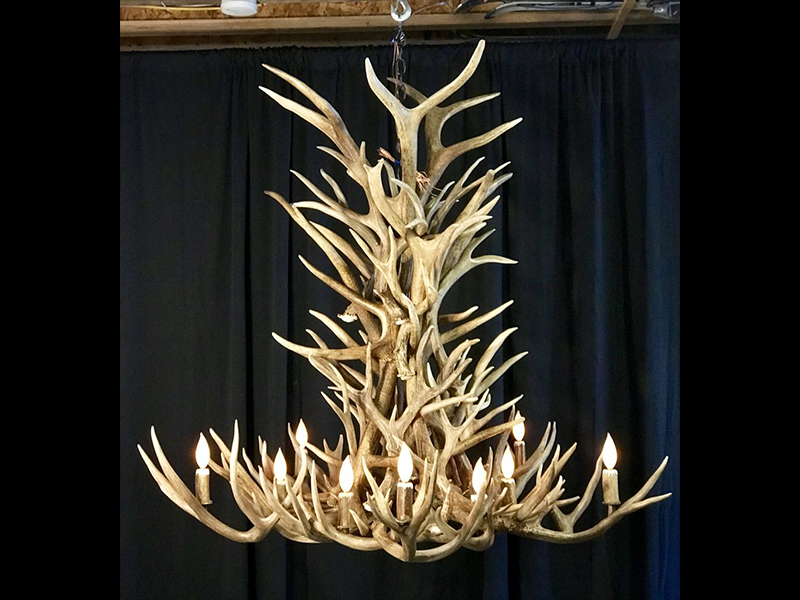 Elk and Mule Deer Combination Chandelier